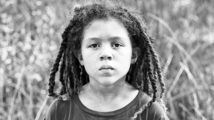 Willow. Photo: David Todd McCarty